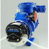 专业供应蠕动泵、防爆蠕动泵