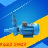 上海新泸龙 搅拌机专用泵