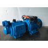 螺杆自吸泵家用高扬程增压泵