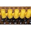旺泉牌SB-6-1000全不锈钢插桶泵